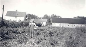 10 verdos garden