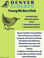 Young Birders Club poster